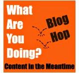 What Are You Doing? 2016 blog hop entries