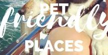 Travel with Pets / Pet-Friendly Places includes travel posts that showcase dog or pet friendly environments. I sometimes travel within the UK with my dog, Baxter, so this board includes posts about where we go and what we see. It also includes posts about dog friendly pubs and places across the UK! There are also tips for camping with dogs and pet travel tips to help you keep your pets and pooches happy on the road.