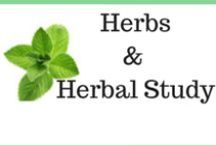 Herbs and Herbal Study / This is my collection of pins having to do with herbs or herbal study.