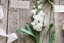 Wedding Tips / Wedding Planning Tips