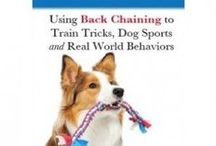 Dog Training DVDs & Ebooks / I produce my own DVDs as well as have a few professional quality Tawzer Dog DVDs.  All my methods use positive reinforcement force free  training through clicker training.   / by Pam's Dog Academy