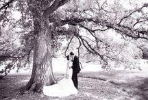 Wedding | Inspiration