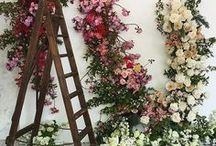 Floral Design / Floral Installations and Centerpieces