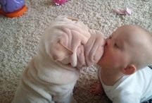 Dogs and babies and puppies / I just cant handle the cuteness