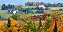 Fall Foliage / Maine's fall foliage makes autumn one of our state's most popular seasons. The radiant, brilliant colors are admired by visitors, Maine natives, and leaf peepers alike.