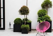 Outdoor | garden | urbangreen