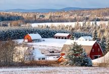 Winter Wonderland / by Visit Maine