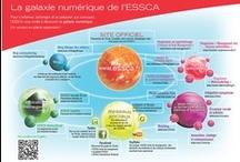 Galaxie numérique de l'ESSCA