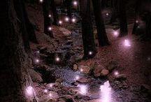Fairy Tales / by Naomi Scott