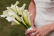Wedding ideas for future / by Abby Suhre