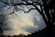 photography-Cultural Heritage / Potography  by Bang, Chulrin