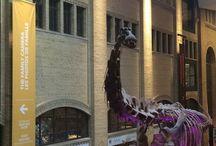 Royal Ontario Museum / Toronto Ontario Royal Ontario Museum