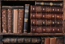 The Library / Books to read and writing to do... / by Stacy D.