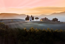 italian regions | tuscany / you think of Tuscany... and gently rolling hills spangled with imposing cypress trees come to your mind..then, memories of your history books bring back Etruscan and Renaissance masterpieces, as well as medieval villages and endless landscapes of olive groves and vineyards - a magical land!