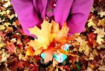 Autumn 2011 Edition
