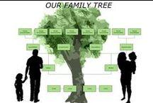 Somewhere inTime-Genealogy