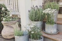 Outdoor Spaces / From fire pits, gazebos, patios to showers - all sorts of outdoor space inspirations.