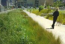 LID-Green Infrastructure