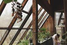 Secret Garden / Nature - the source of inspiration...
