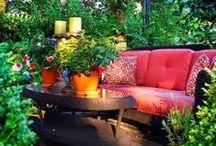 garden impressions / Cozy and nice gardens