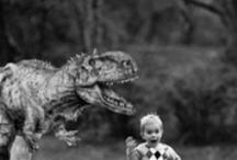 Photoshop Tips and Tutorials / by Miranda Hancock