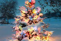 Holidays: Christmas! / by Samantha Snook