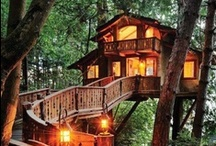 I could really write here . . .