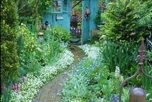 Gardening / by Pauline Fields