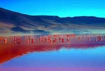 Places to visit / by Leonardo Fantinati