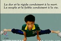 Fédération Française de Judo / Annonces presse