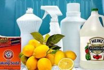 Home: Getting Clean / by Julia Quintero