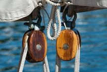 sail / by Nicole Erickson