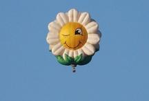 Hot Air Balloons / by Deborah Haseltine