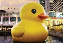 The Giant Rubber Duck is Here
