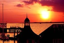 The Pier / Discover The Pier, a luxury boutique hotel with two restaurants in Harwich, Essex. Standing proudly on the quay side of old Harwich, this hotel consists of 14 bedrooms , has two celebrated seafood restaurants and is famous for its fish & chips!