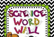 4th grade science / by Teresa Merckle