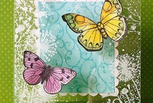 Cards - Butterflies and Dragonflies