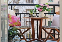 Decorate - Balcony & Container Pots