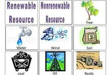 3rd grade renewable resources (ES) / by Teresa Merckle