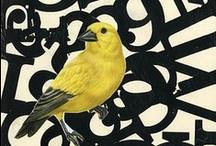 Birds / by Molly Kunselman