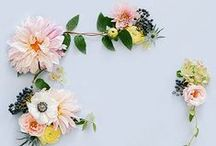 Pretty Little Flowers / Inspiration for floral shoot. Sprigs, painterly, fresh, small clusters.