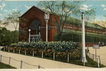 Postcards / Postcards from the Lincoln Park Zoo archives.