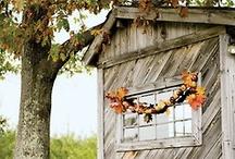 Harvestfest Inspiration / by Julia Marchand
