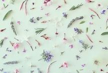 FLOWERS & JARDIN LOVE / by Liefdesfabriek Vivian Dony