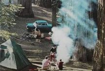 Mid Century Camping / by Julia Marchand