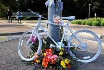 COLLECTIONS: Ghost Bikes / ghost bikes, memorials, shrines / by Cat Weaver