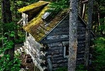 Little Cabin in the Woods. / ...everything woodsy and rustic and wonderful.
