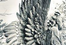 Angels / by Ilonka