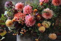 Florals / by Sperry Gander