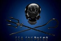 Sea Shepherd / by Rani Anderson